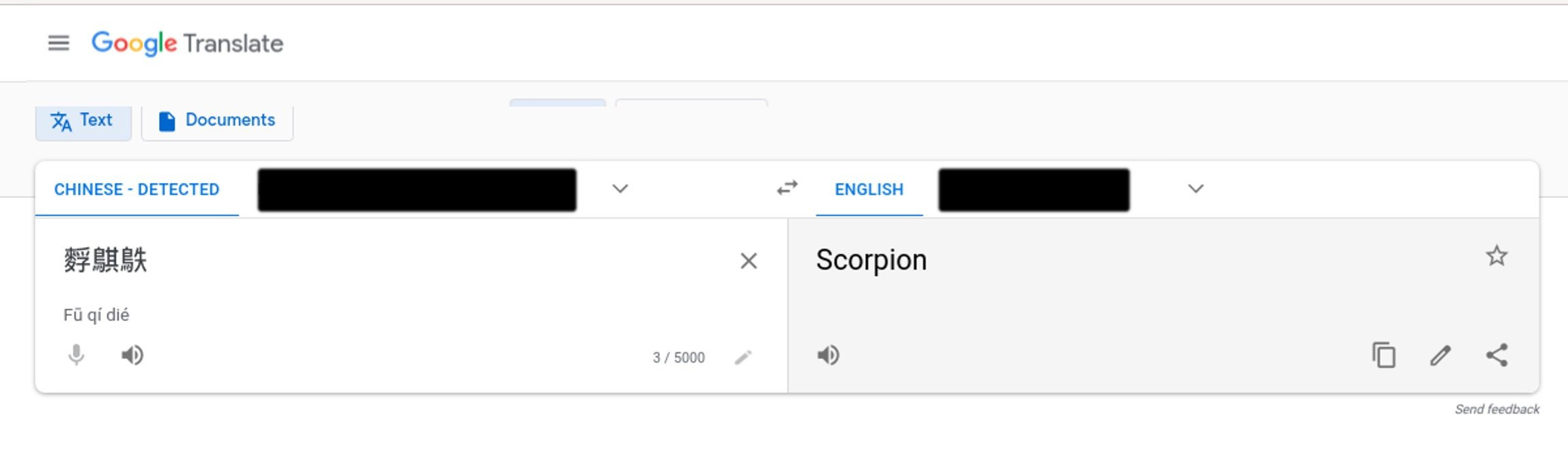 Google Translate showing suspicious HTTP user agent translation