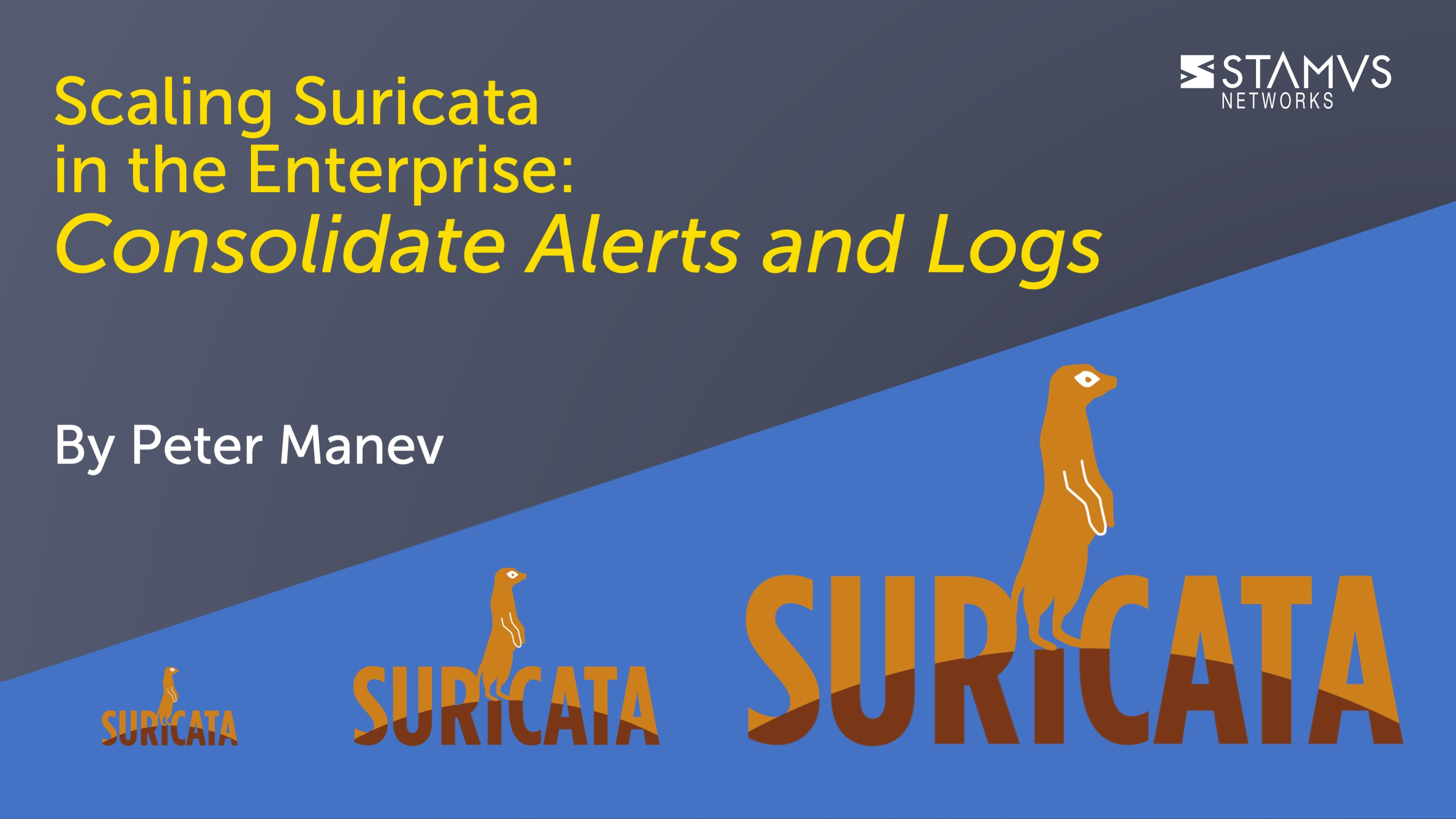 IMAGE: Scaling Suricata in the Enterprise - Consolidate Alerts and Logs